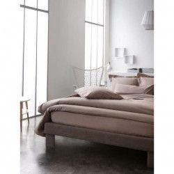 TODAY Drap plat 100% coton - 240x300 cm - Mastic