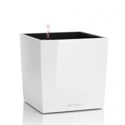 LECHUZA CUBE 30 Intérieure Kit de plantation en pot Autonome Polypropylène (PP) Blanc