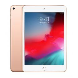 """Apple iPad Mini 64 Go WiFi Or 7.9"""" 2019 5 ème génération"""
