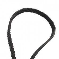 JARDIN PRATIC Courroie double denture - L 160 x l 2 cm