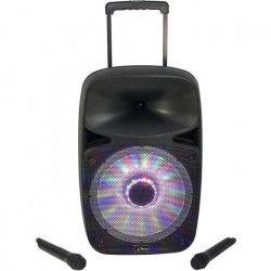 PARTY LIGHT & SOUND PARTY-SP700 Systeme de sonorisation portables 15``/38cm - 700W avec avec USB/Micro