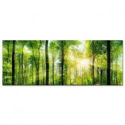 Tableau Déco Photo de Paysage Nature Verdoyante - Paysage - 80x30 cm