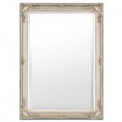 Maissance Miroir 50x75 cm - Argent antique