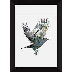 Tableau encadré 50x70 - Oiseau