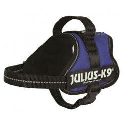 Harnais Power Julius-K9 - Mini-Mini - S : 40-53 cm-22 mm - Bleu - Pour chien