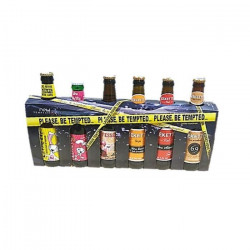 Coffret de 6 bieres Pleased be temped - 33 cl - 6,08 %