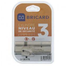 BRICARD TRIALS 17211 Cylindre 30+70 mm double entrée laiton nickelé
