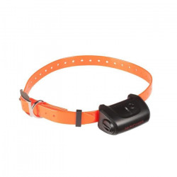 NUMAXES Collier supplémentaire CANICOM 5 - Sangle orange