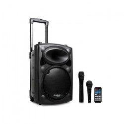 IBIZA SOUND PORT10VHF-BT Systeme de sonorisation portable autonome 25 cm avec USB - MP3, bt, rec, vox, 1 micro vhf