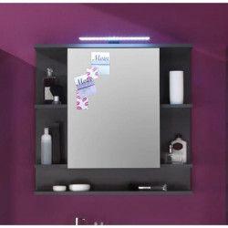 TETIS Armoire de toilette L 72 cm - Gris graphite