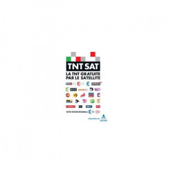 TECHWOOD Récepteur satellite TNTSAT HD TK100TNT01B