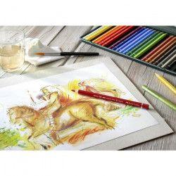 FABER-CASTELL Boîte de 24 Crayons de couleur aquarellable A Dürer Magnus