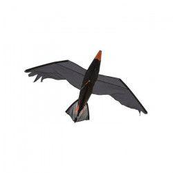 HQ Cerfs-Volants Monofils Raven 3D