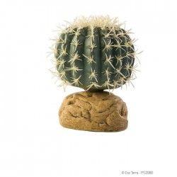 Décoration Cactus Oursin