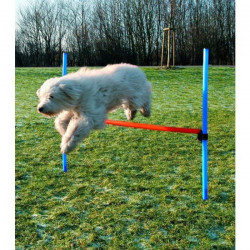 TRIXIE Dog Activity Obstacle Agility pour chien