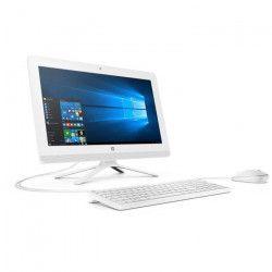 HP PC Tout-en-Un 20-c417nf - 19,5` FHD - AMD E2-9000 - RAM 4Go - Disque Dur 1To HDD - AMD Radeon R2 - Windows 10